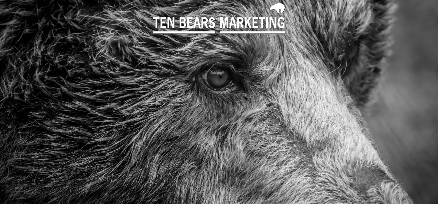 Ten Bears is a small, independent specialist in public sector marketing